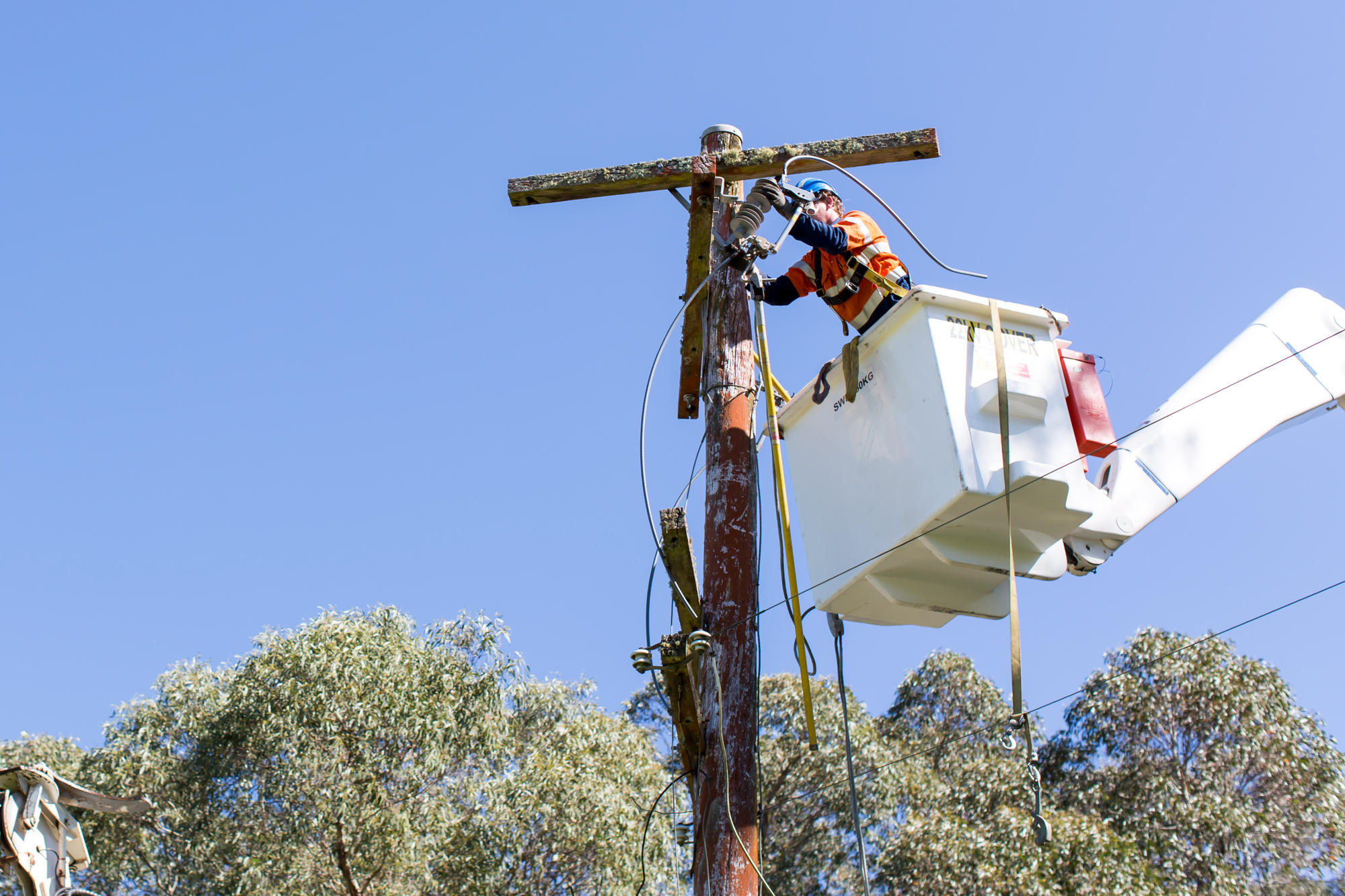 An ARA Electrical technician inspecting powerlines on a private network.